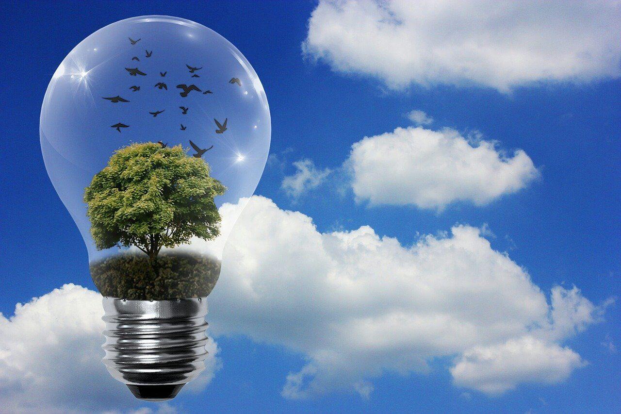 nel asa stock renewable energy
