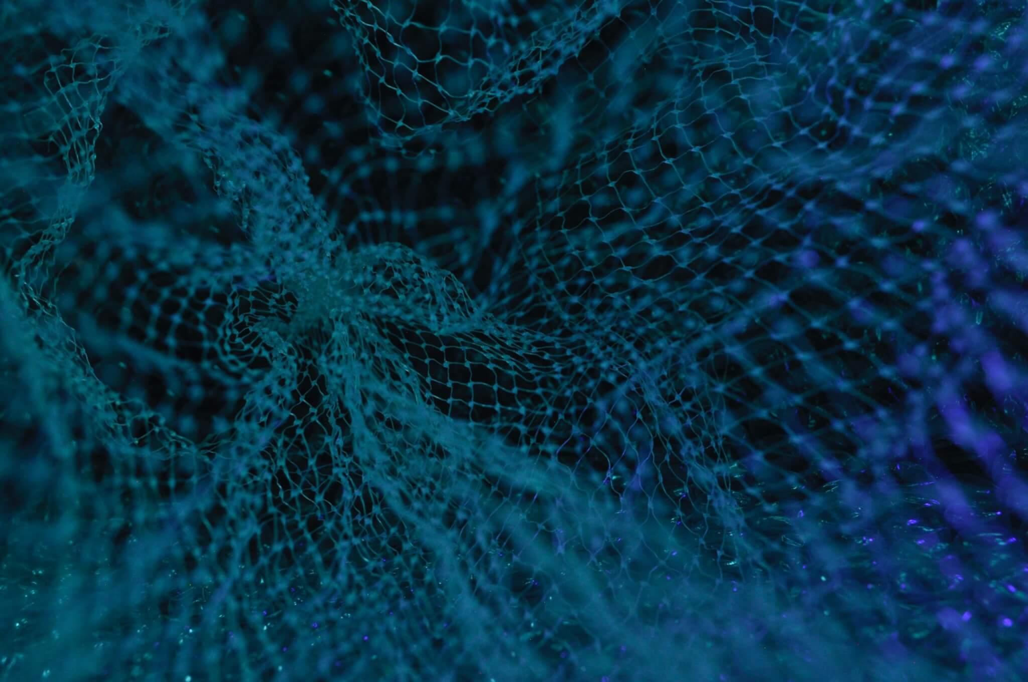 polygon matic koers netwerk
